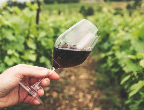 un bon vin